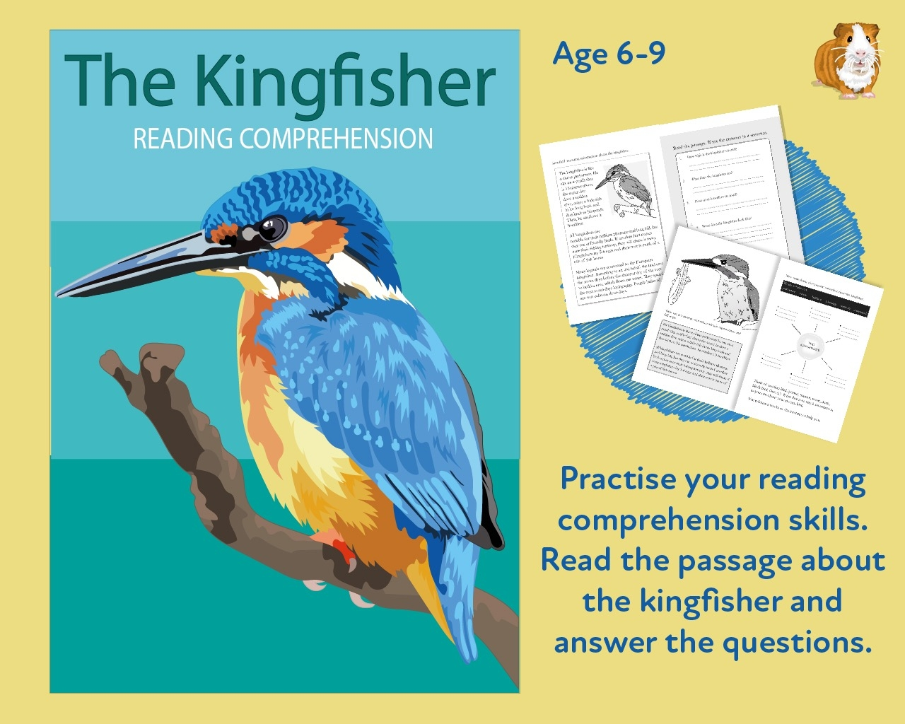 - Let's Practise Our Reading Comprehension: The Kingfisher (6-9