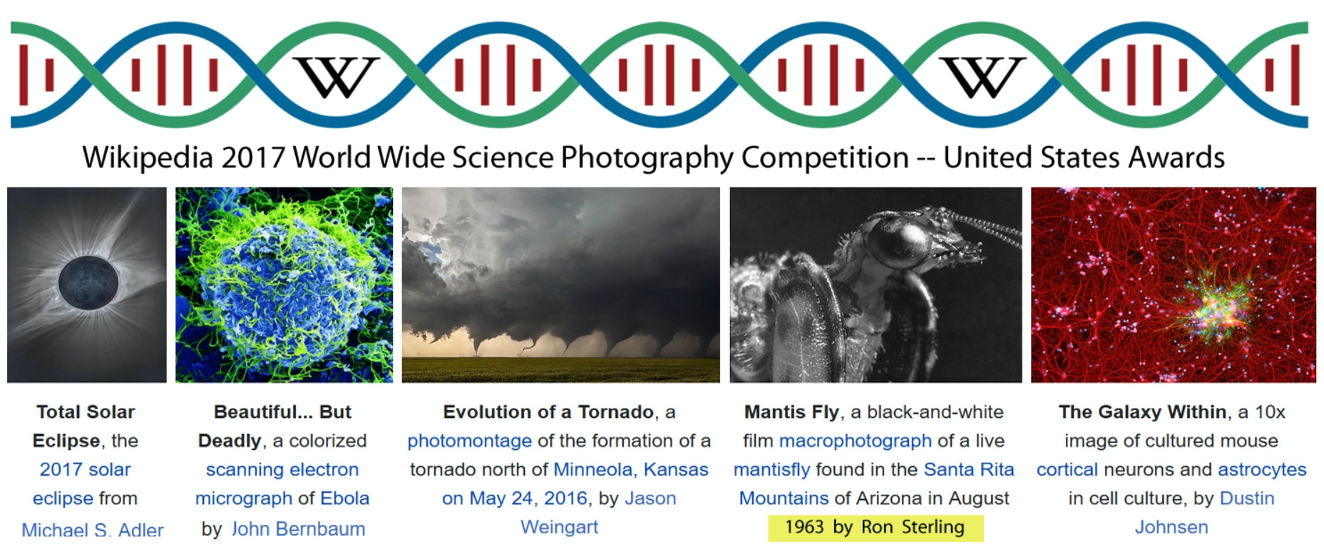 2017 Award for United States Section of World Wide Wikimedia Science Photography Contest