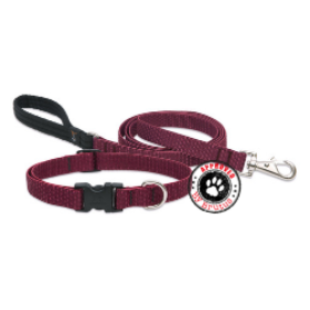 Dog and puppy collar and lead sets, tested and Approved by Brutus.