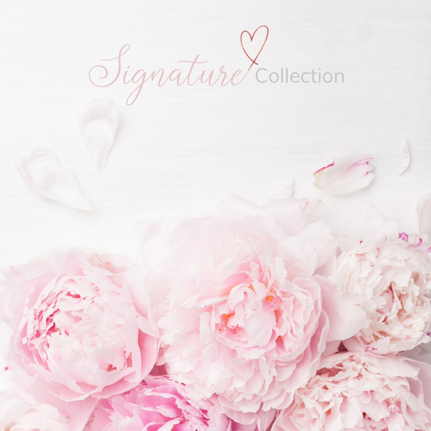 Signature Collection Scents