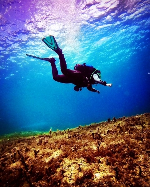 Canary Divers Scuba diving in Gozo