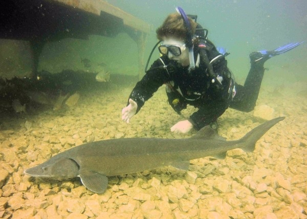 Learn to scuba dive in  East Lancashire