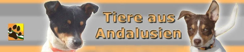 Tiere aus Andalusien