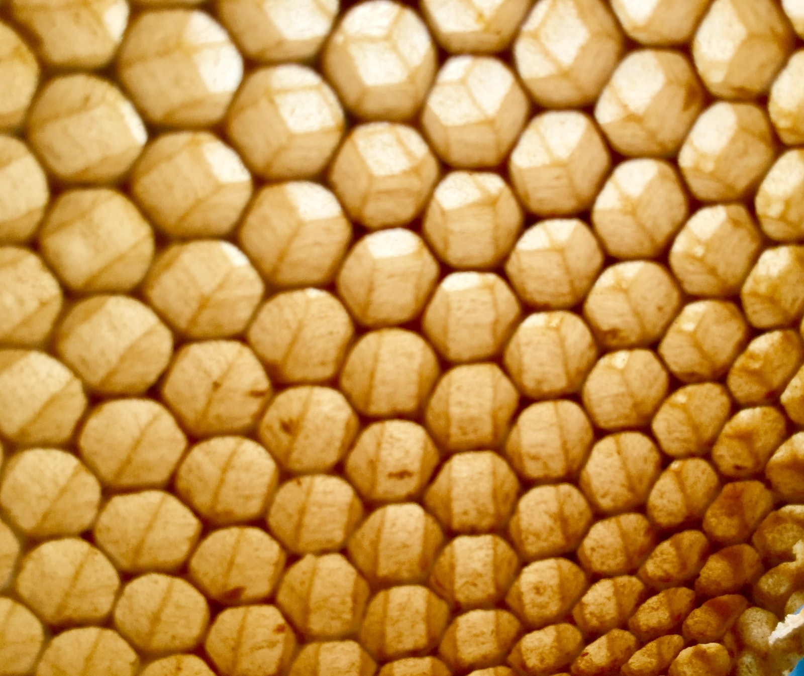 What 34.4º products contains beeswax and honey? What are their benefits?