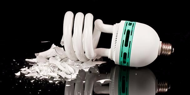 BEYOND VEGAN: Energy Saving Bulbs Poisonous To the Brain and Nervous System?