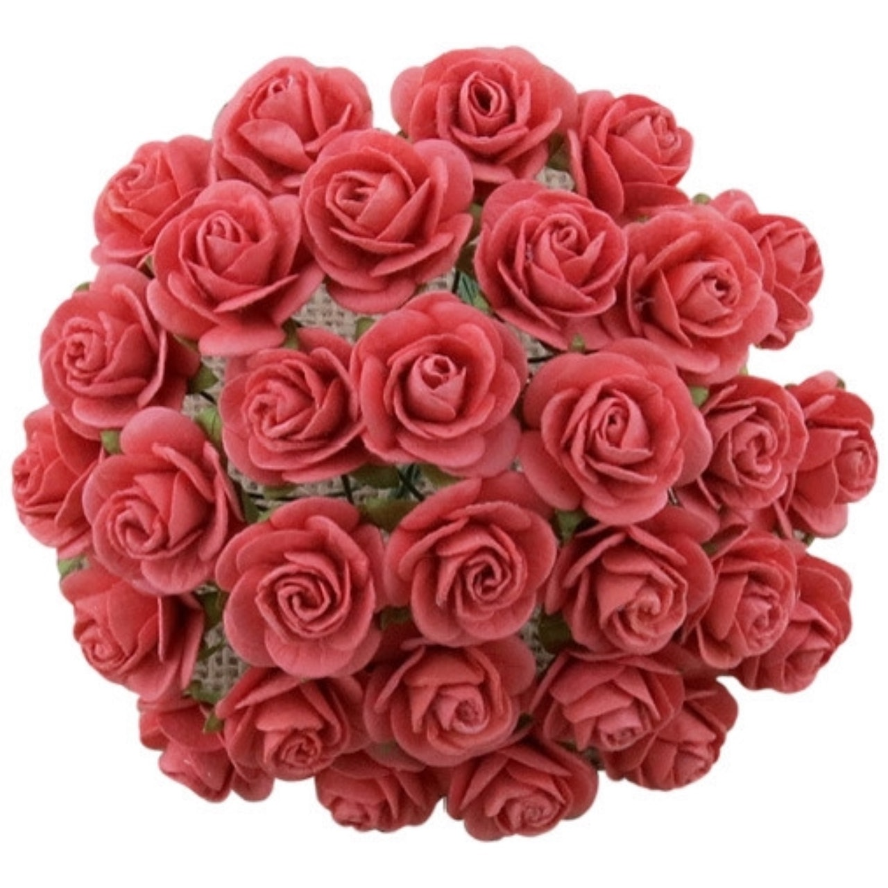 20mm Open Roses