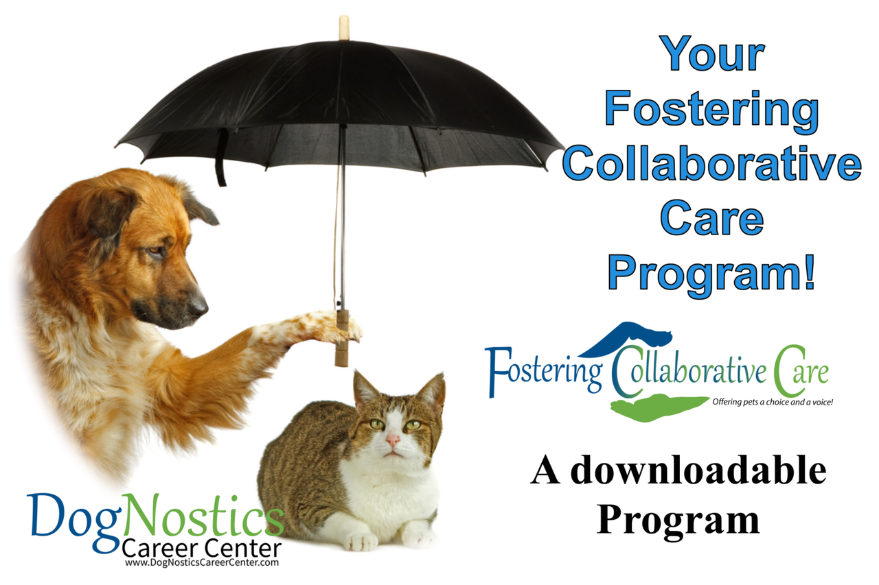 Fostering Collaborative Care Instructor Program