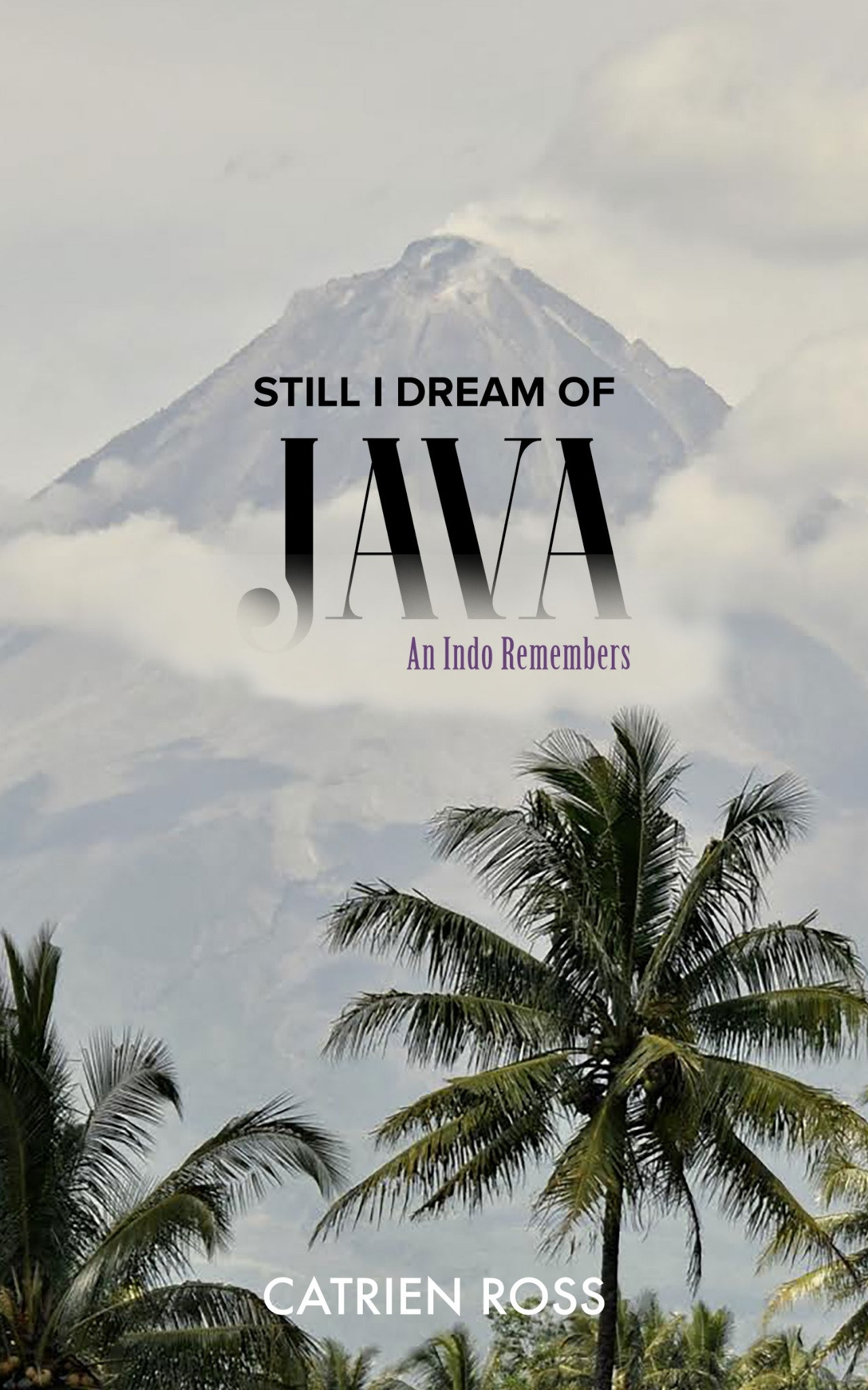 STILL I DREAM OF JAVA