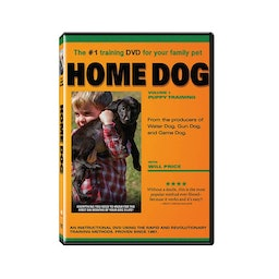 Home Dog Training Dvd Joseph Steen