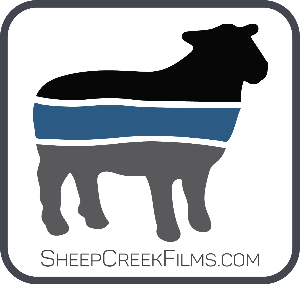 Sheep Creek Films stock images and footage