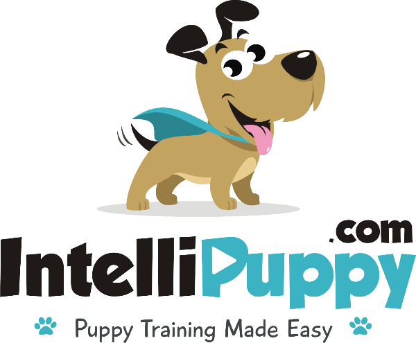 IntelliPuppy.com